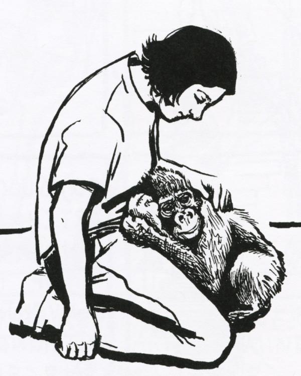 Gorilla Year by Cara Bean