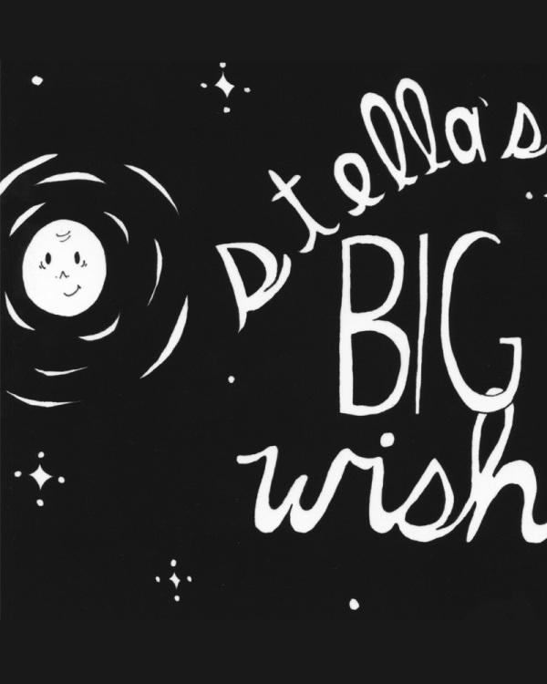 Stellas Big Wish by Leslie Perrine
