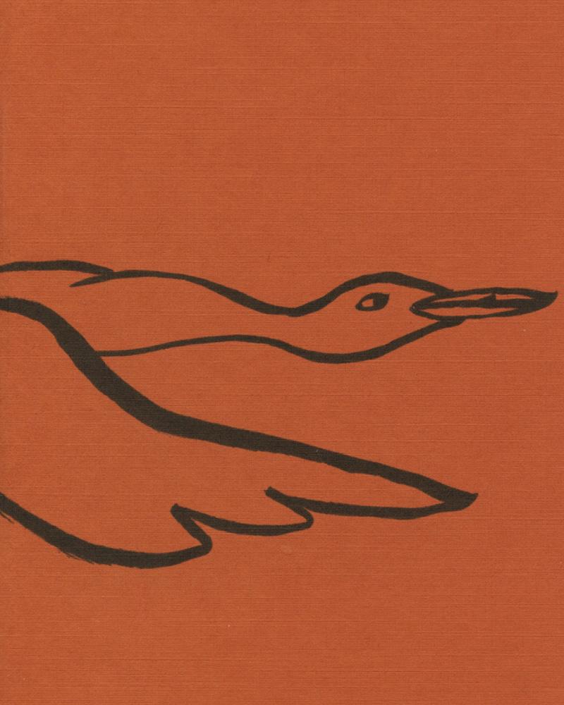 Beaches, Bars, and Birds by Marian Runk