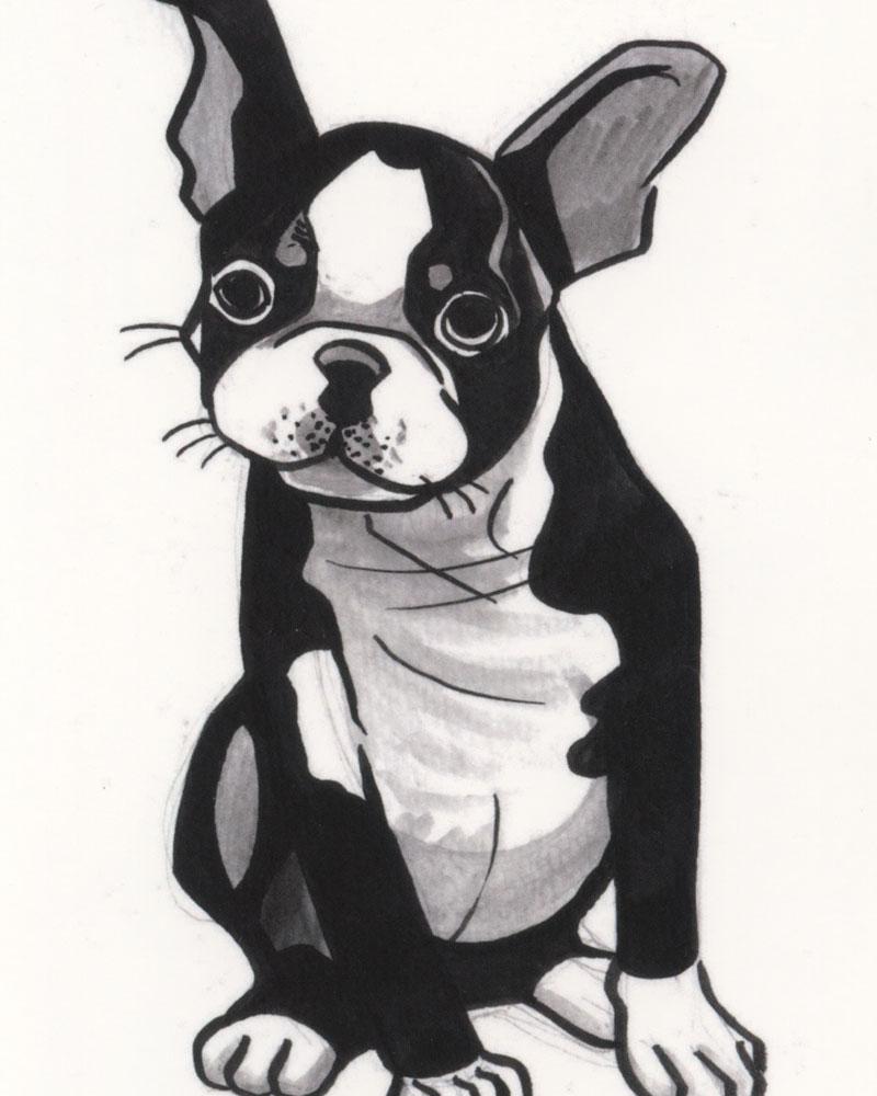 Dog Postcard by Cathy Hannah